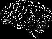 Mózg - grafika