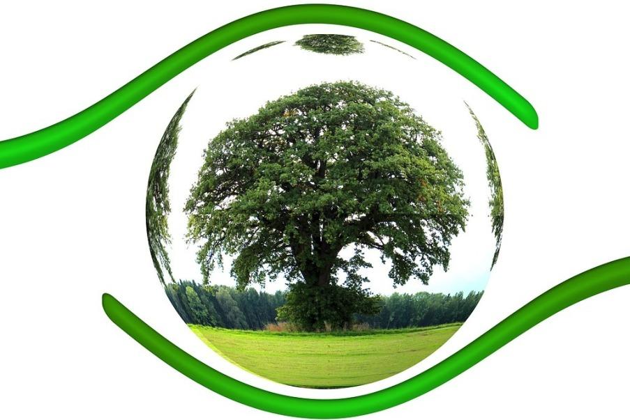 Ekologia - zielona kula