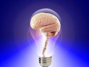 Mózg w żarówce - grafika
