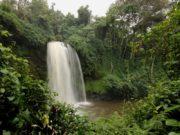Wodospad w Parku Kahuzi-Biega.(fot: Tanguy Dumortier)