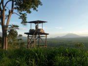 W oddali wulkan Nyiragongo.