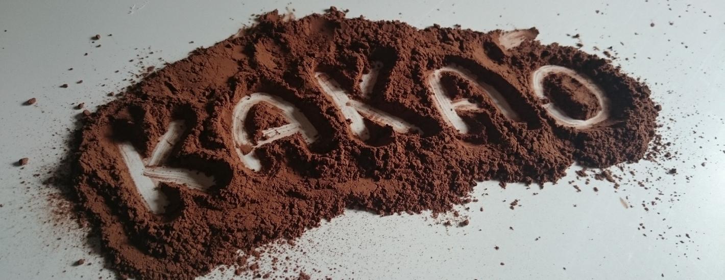 Kakaowce udomowiono tysiące lat temu